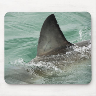 Dorsal aileron of a Great White shark Mouse Pad