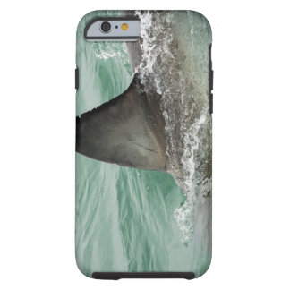 Dorsal aileron of a Great White shark Tough iPhone 6 Case