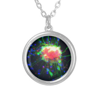 Dorsal root ganglion silver plated necklace