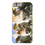 Dorset, UK Barely There iPhone 6 Case