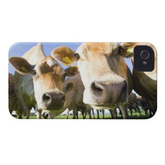 Dorset, UK iPhone 4 Case