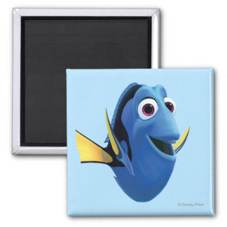 Dory 1 2 inch square magnet