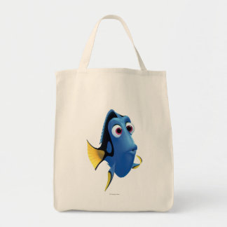 Dory 4 grocery tote bag