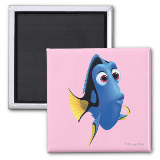 Dory 4 2 inch square magnet