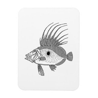 Dory Fish Rectangle Magnets