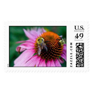 dos abejas sellos