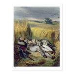 Dos amantes que mienten en un campo de maíz tarjetas postales