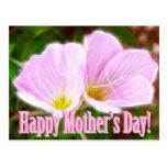 Dos amapolas rosadas para el día de madre postales