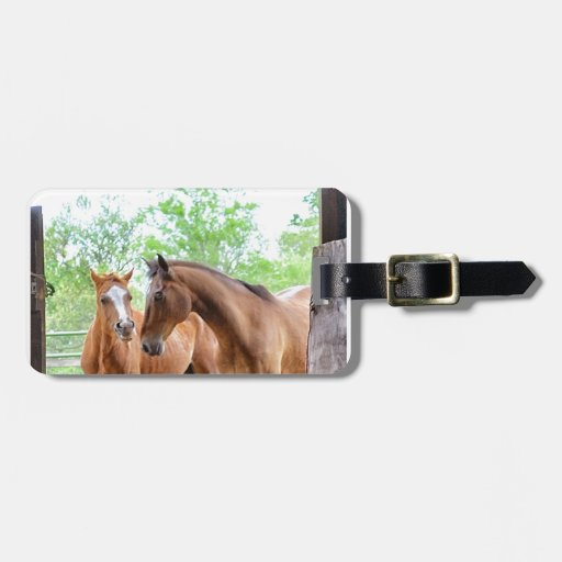 Dos amigos del caballo etiqueta de equipaje