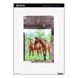 Dos amigos del caballo pegatina skin para iPad 3