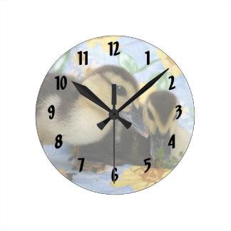 dos anadones un cierre de la cámara que observa reloj redondo mediano