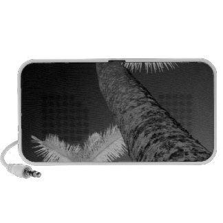 Dos árboles de palma infrarrojos iPod altavoces
