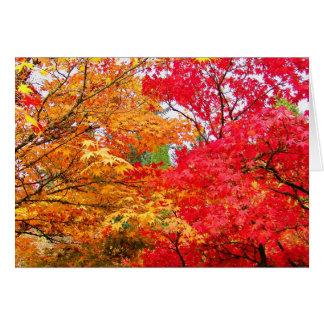 Dos arces en otoño tarjeta pequeña