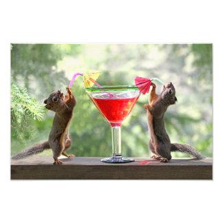 Dos ardillas que beben un cóctel impresiones fotograficas