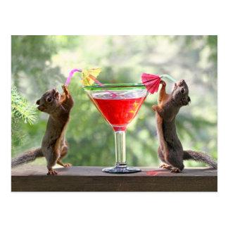 Dos ardillas que beben un cóctel