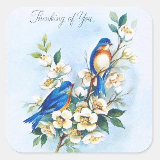 Dos Bluebirds Colcomanias Cuadradas Personalizadas