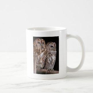 Dos búhos en una barra de metal en el diseño de la taza básica blanca