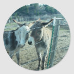 Dos burros pegatina redonda