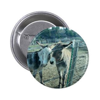 Dos burros pins