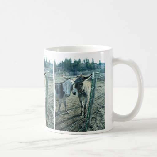 Dos burros taza