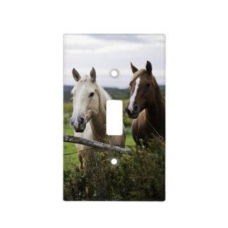 Dos caballos colocan la cerca cercana en campo de  tapa para interruptor