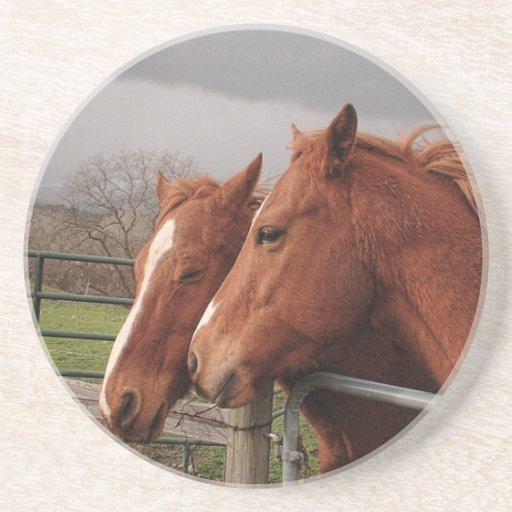 Dos caballos coloreados moreno posavasos personalizados