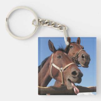 Dos caballos de bahía, caballo pegan hacia fuera llavero cuadrado acrílico a una cara