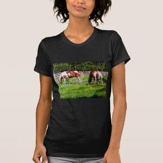 Dos caballos de la pintura que pastan playera