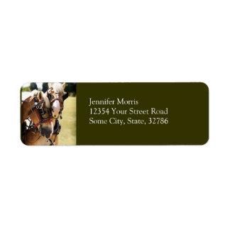 Dos caballos de proyecto belgas etiquetas de remite