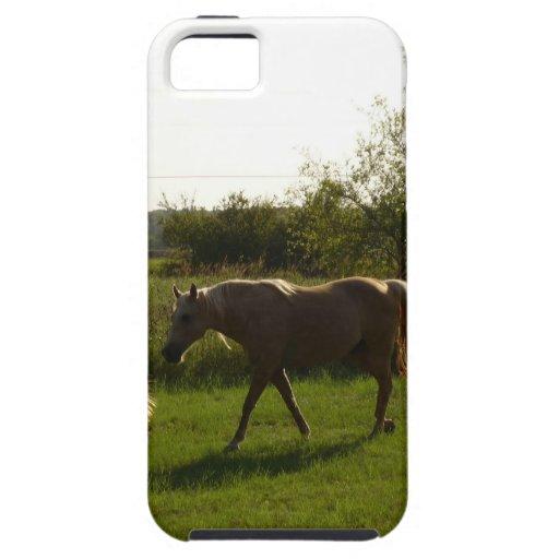 Dos caballos en campo abierto iPhone 5 funda