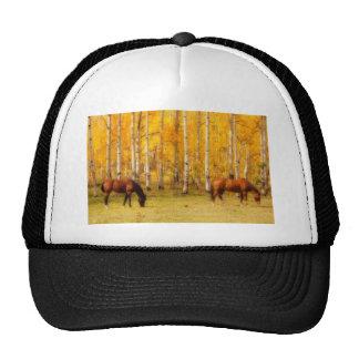 Dos caballos en el follaje de otoño de Colorado Gorro