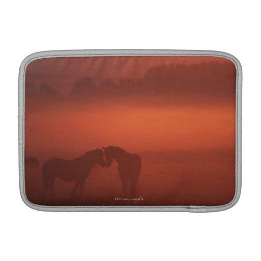 Dos caballos en la puesta del sol funda para macbook air