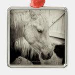 dos caballos fuera de un establo blanco y negro ornamente de reyes