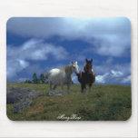 Dos caballos hermosos alfombrilla de raton