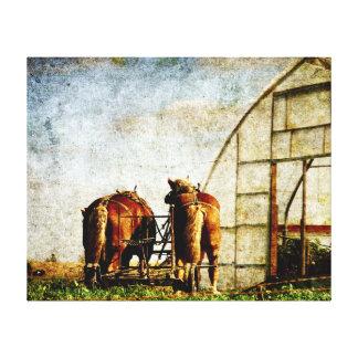 Dos caballos listos para el trabajo lienzo envuelto para galerias