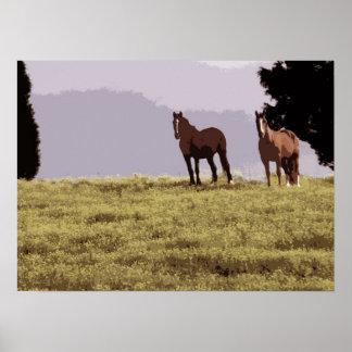 Dos caballos poster