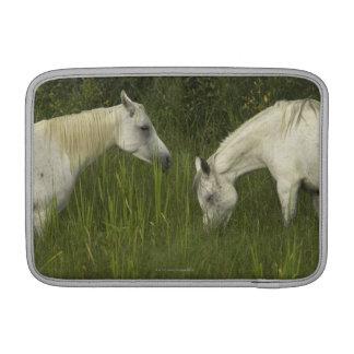 Dos caballos que comen la hierba funda macbook air
