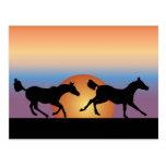 Dos caballos que corren contra una salida del sol postal