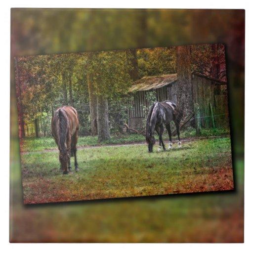 dos caballos que pastan azulejo cerámica