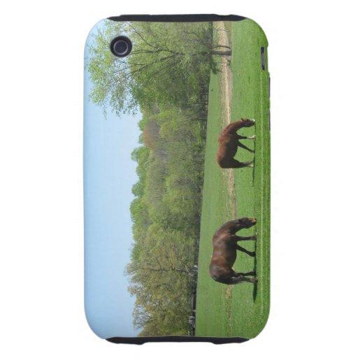 Dos caballos que pastan iPhone 3 tough coberturas