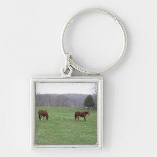 Dos caballos que pastan llavero cuadrado plateado