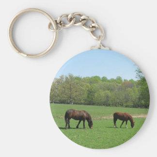 Dos caballos que pastan llavero redondo tipo pin