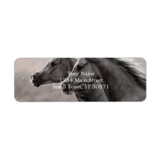 Dos caballos que pintan sementales negros del etiquetas de remite