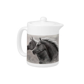 Dos caballos que pintan sementales negros del