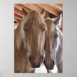 Dos caballos rubios posters