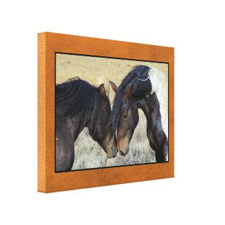 Dos caballos salvajes de Brown Nuzzling Lienzo Envuelto Para Galerias
