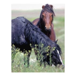 Dos caballos salvajes, Utah Membrete Personalizado