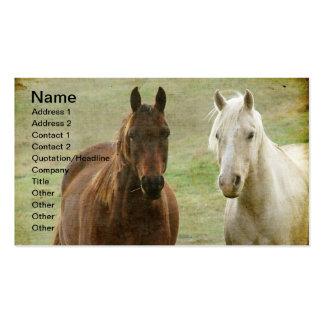 Dos caballos tarjetas de visita