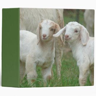 """Dos cabras blancas lindas del bebé carpeta 2"""""""