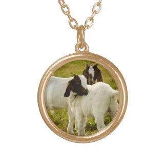 Dos cabras collar dorado
